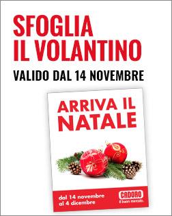 Volantino P24 dal 14/11 al 04/12