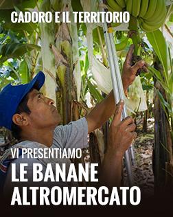 Lancio Banane 14 - 20  giugno