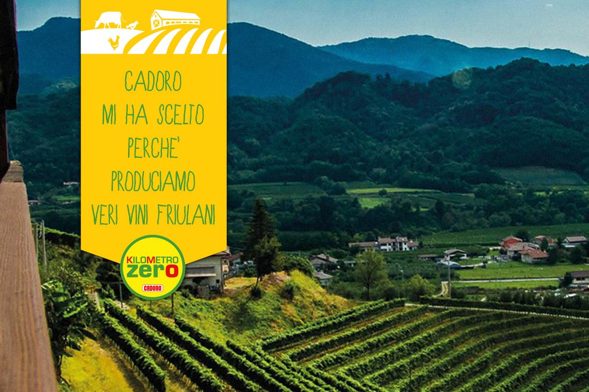 Cantina Dario Coos: vini che parlano di Friuli