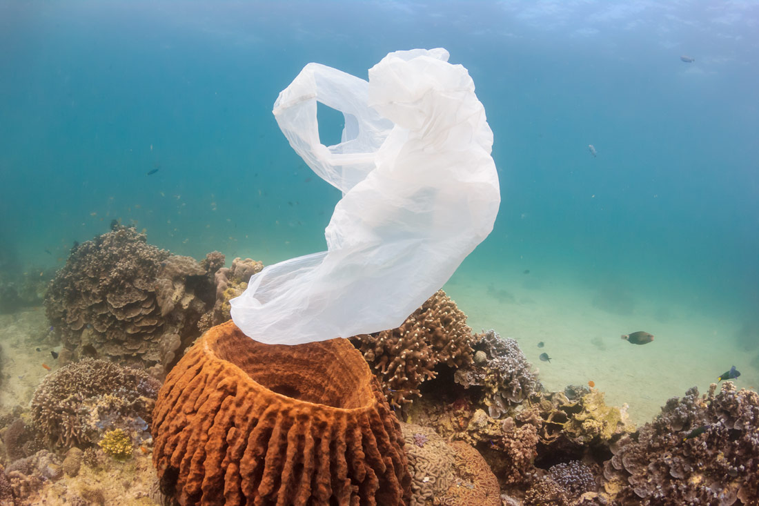 Il nostro impegno per un mondo con meno plastica