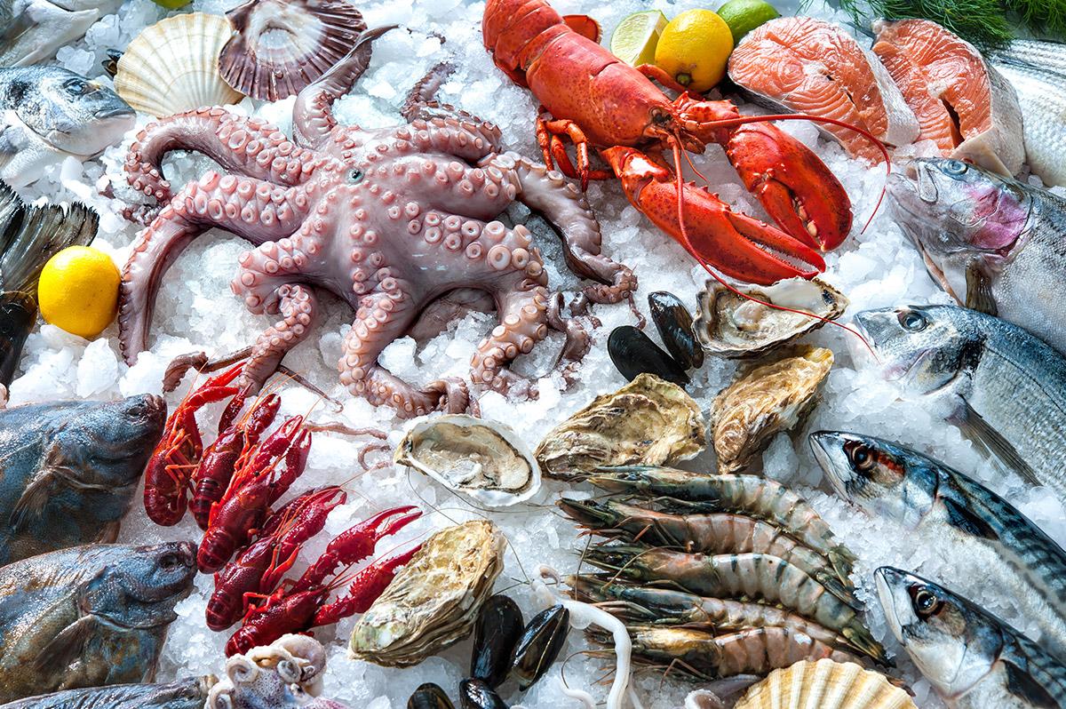 Reparto Pescheria Cadoro: molto più di semplice pesce!