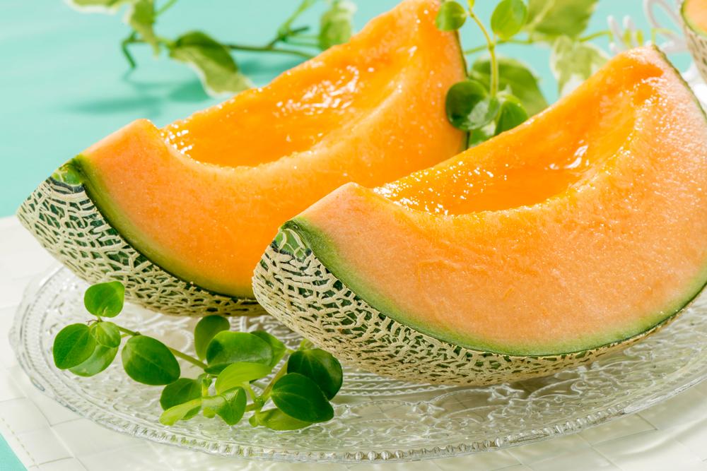 Meloni Sattin