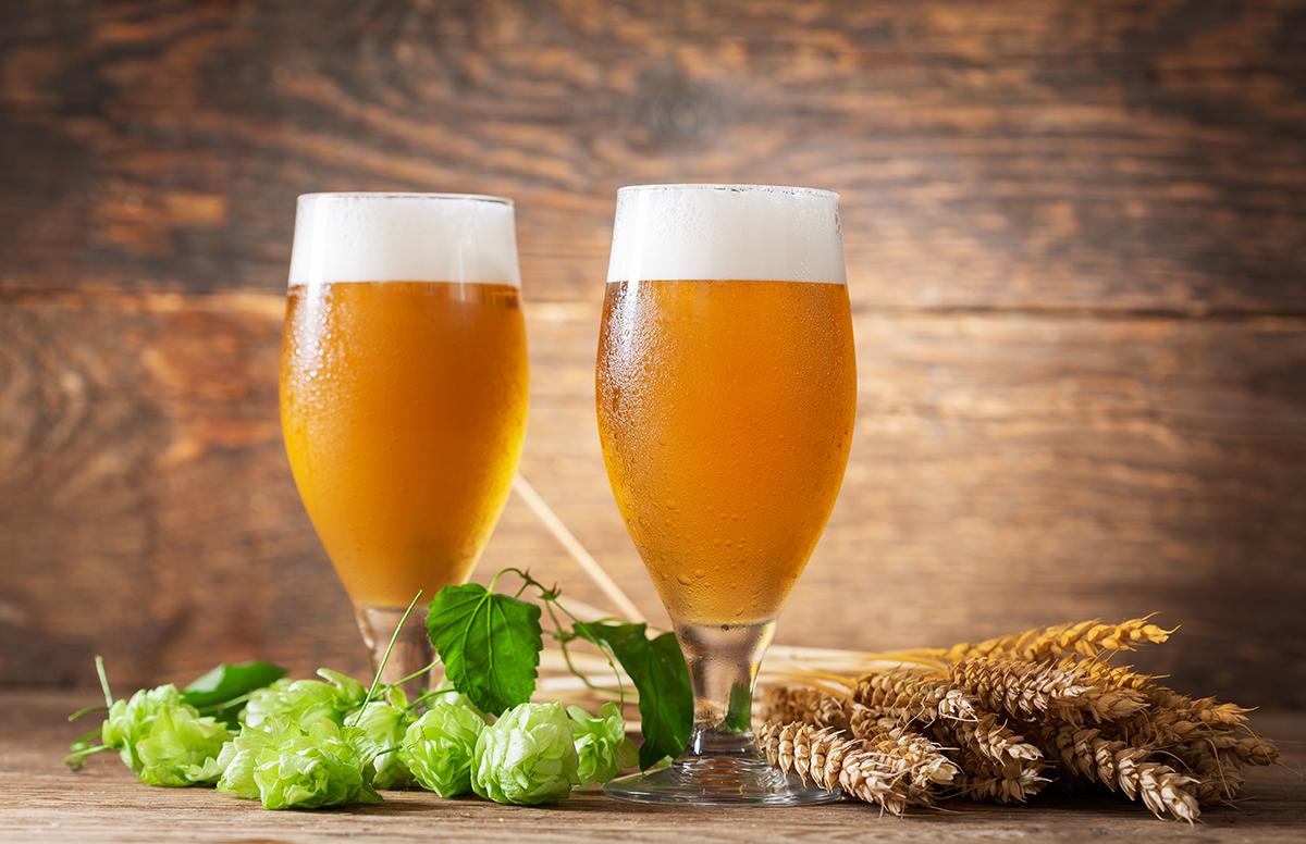 Birra: proprietà e benefici