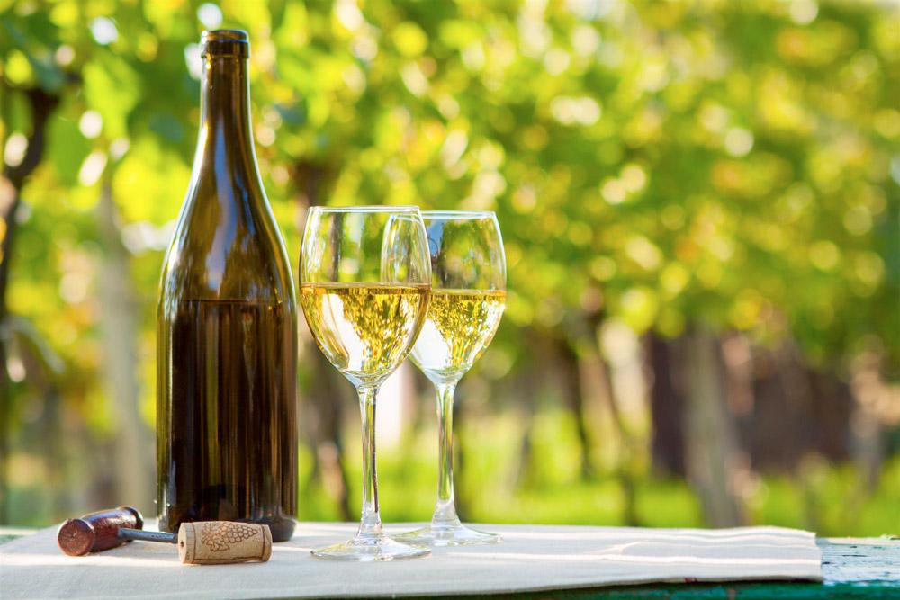 Il vino: ieri e oggi, come e quando fa bene