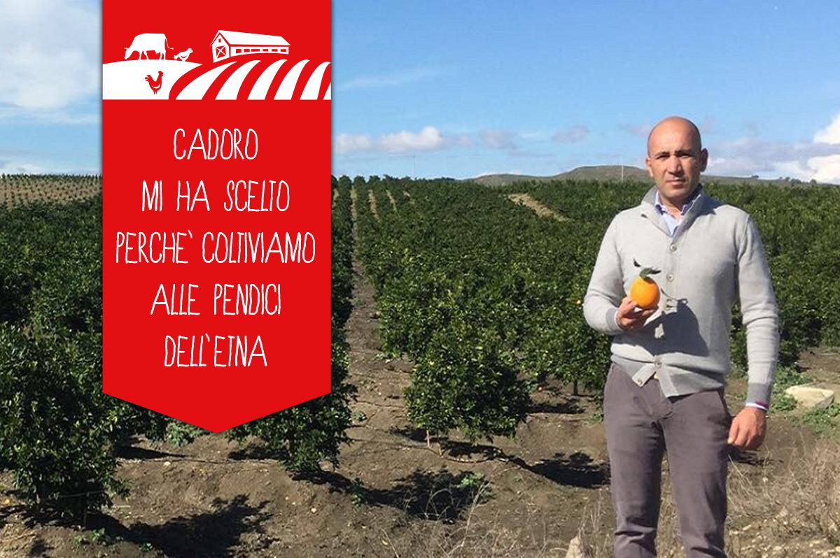 Arancia: Il sapore autentico di Sicilia