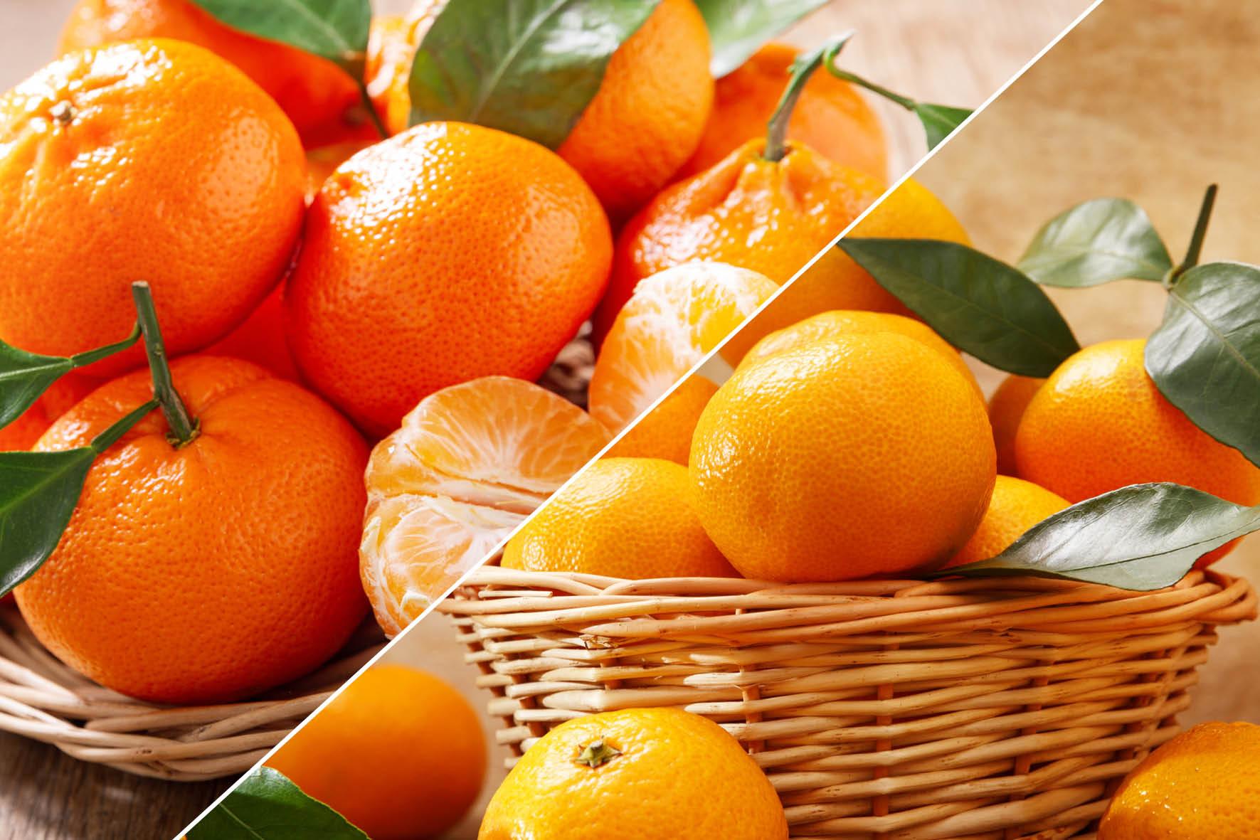 Mandarini e Clementine: conoscere le differenze