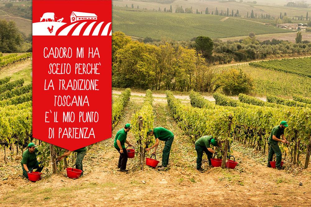 Cantina Balzi Fratti: una storia di famiglia