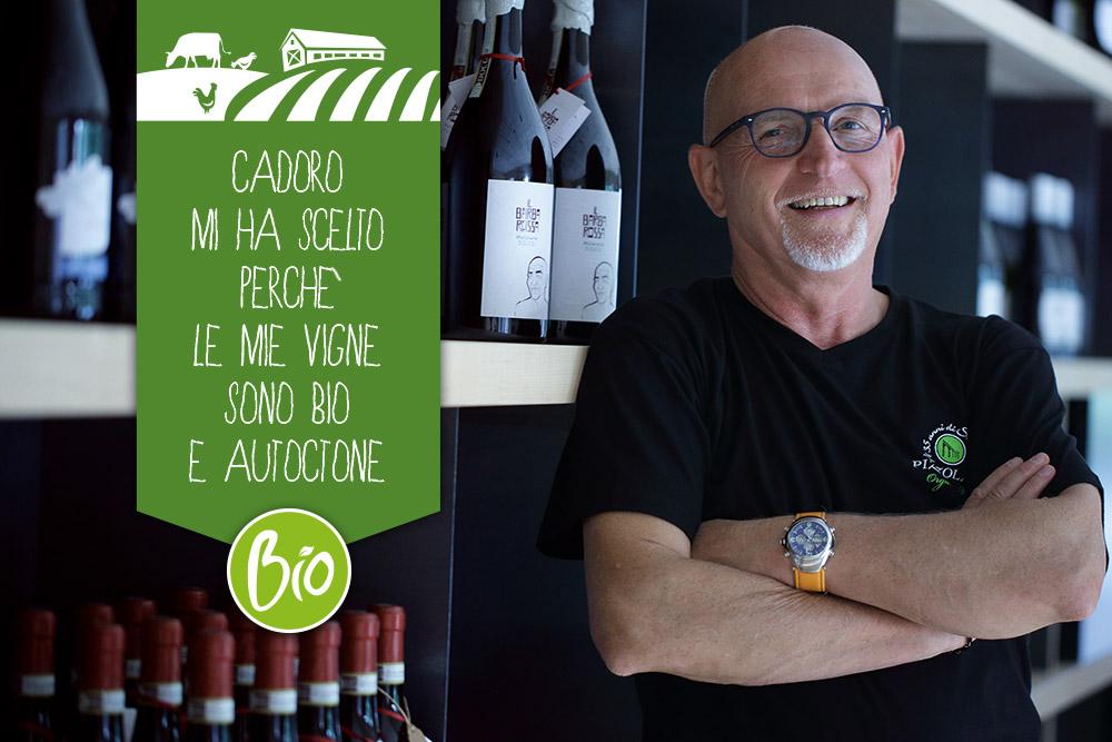 Cantina Pizzolato: vini bio tra storia e tradizione