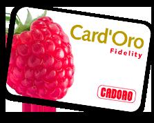 Newsletter card oro